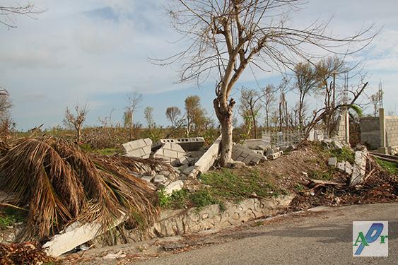arton20839-danios-huracan